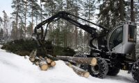 Stora Enso fördjupar markanalyserna med SMHI