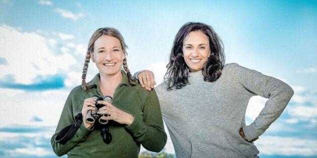 Kändisar tävlar i fågelskådning – SVT försökte hålla programmet hemligt