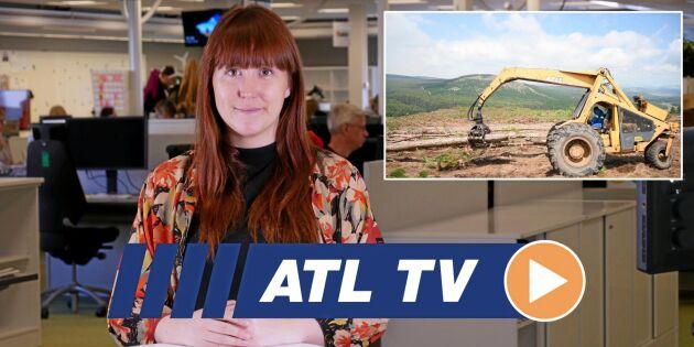 ATL TV: Mobil rensning allt populärare
