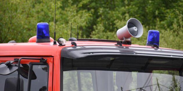 Skogsbrand tvingar lantbrukare evakuera kor