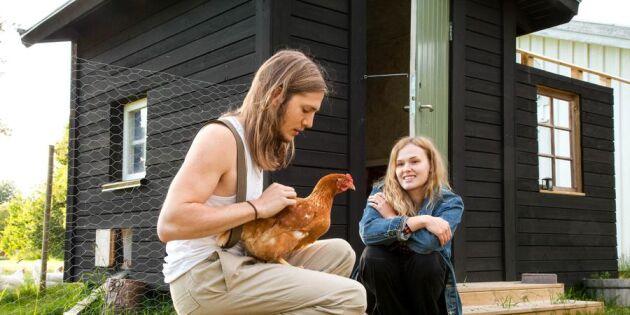Från nybörjare till vana hönsägare: Så gjorde Emelie och Hampus för att komma igång