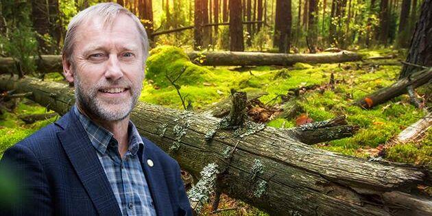 """""""Vi skogsägare ska inte riskera ekonomisk skada om vi skapar naturvärden"""""""