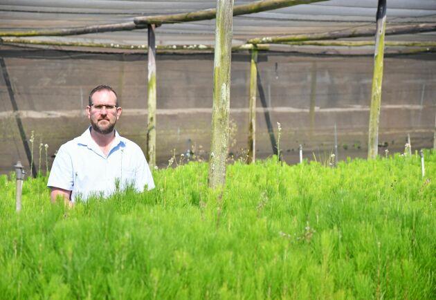 Peter van Schalkwyk arbetar som processchef på TWK Agri, ett av Sydafrikas tio största skogsbolag.