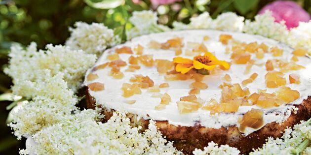 Cheesecake med rabarber och ingefära – sommarens ljuvliga fikadröm