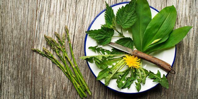 Mat i säsong: 13 svenska råvaror du kan äta i april