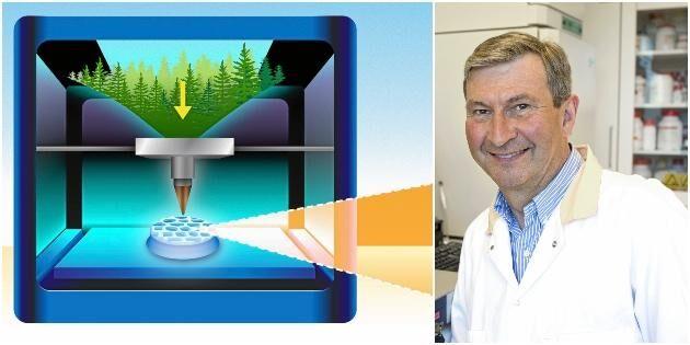 3D-utskrifter av trä ger nya möjligheter