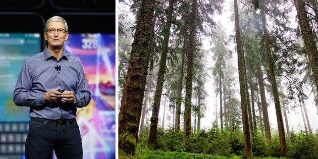 Apples vd besökte svensk skogsjätte – hemligt samarbete avslöjat