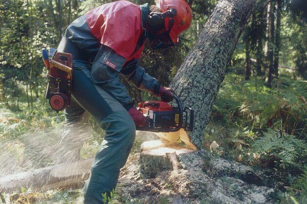 Skogsstyrelssen överklagar dom om publicering av avverkningsanmälningar på nätet.
