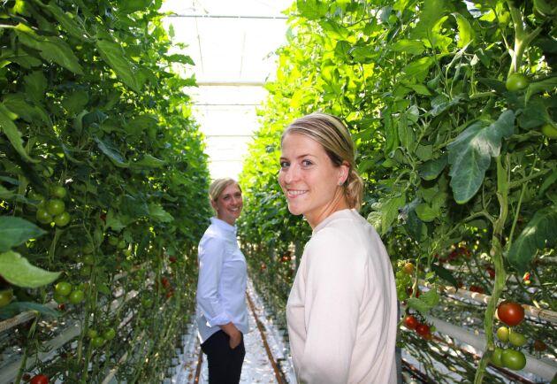 Madeleine (till vänster) och Alexandra Nilsson i växthuset där de odlar tomater.