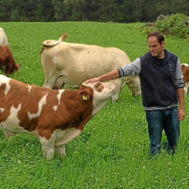 – Jag tycker inte att uppbindningsförbudet skulle gälla för oss med små besättningar, säger Anders Henriksson, lantbrukare i Hjortsberga i Småland.