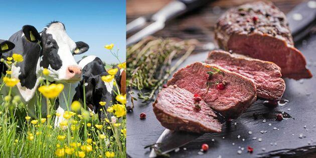 Det här är skillnaden mellan svenskt och importerat kött