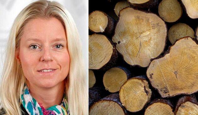 Anna Baglioni blir ny regionchef för Holmen Skog Syd.