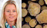 Ny regionchef på Holmen Skog