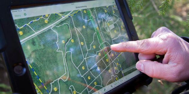 Nytt projekt ska utveckla skogsbruksplanerna