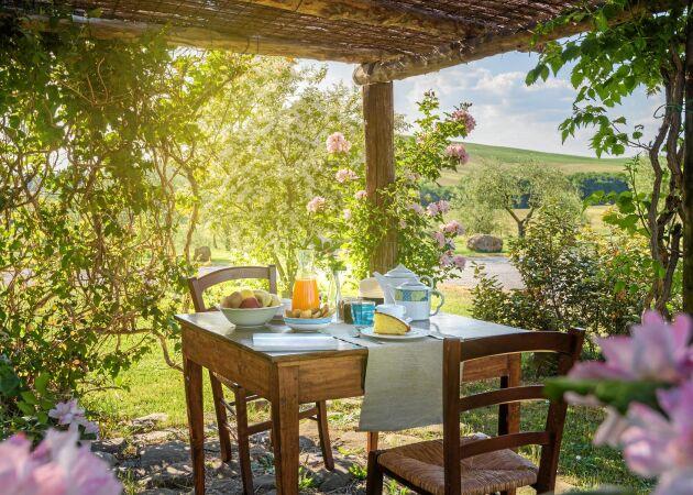 Pergola i sommar – tips, stilar och knep för ett lyckat bygge