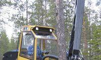 """Nya """"tigrar"""" för skogen på gång"""