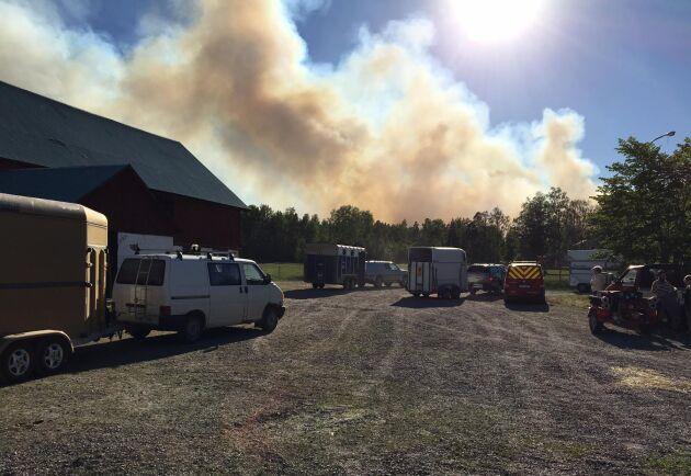 Rökmolnen syns tydligt från gården, men än så länge har branden inte nått ägorna.