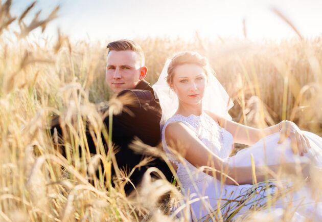 Vill du fotografera dig med din blivande make/maka så måste du be markägaren om lov innan!