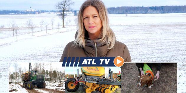 ATL TV: Maskintillverkare går samman