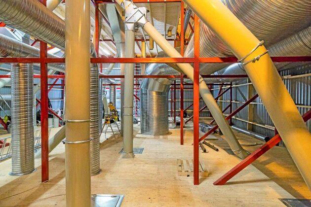 Upp till taket för torkhuset lyfts spannmålen med elevatorer för att transporteras och fördelas till vald destination. Här uppe finns även ventilationstrummorna för exempelvis våtluften från torkarna.