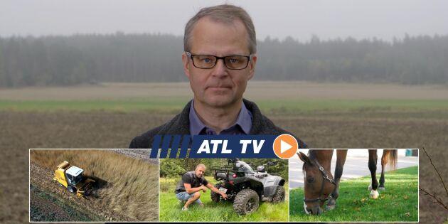 ATL TV: Här skördas kernza