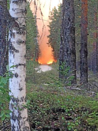 Branden spred sig snabbt i Björn Brinks skog och han var själv med och försökt släcka branden.