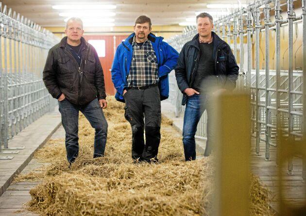 Tre fjärdedelar av delägarna till Vedums Smågris AB vars jättestall nu kan börja byggas: från vänster Clas Hellström, Bo Johansson och Stefan Lundmark.
