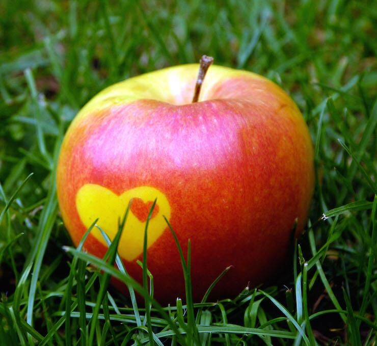 Apple, apples with heart, on meadow, grass