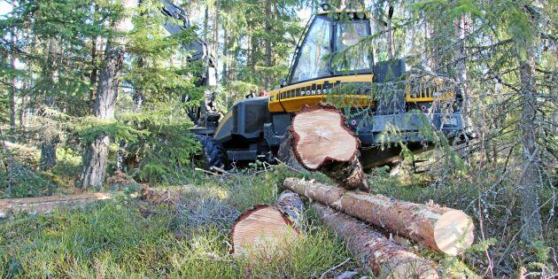 Sveaskog gör hyggesfri zon på 2 000 hektar