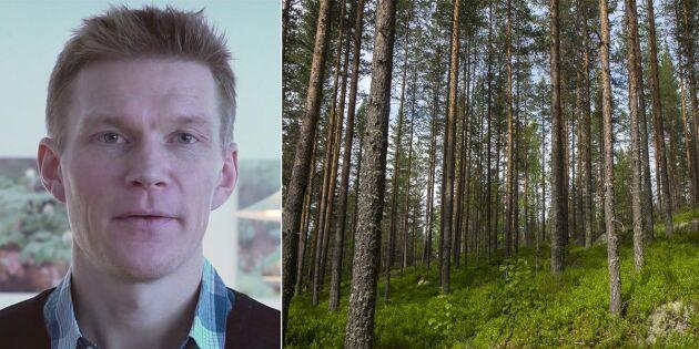 Olovligt tältläger i skogen svårt att få bort