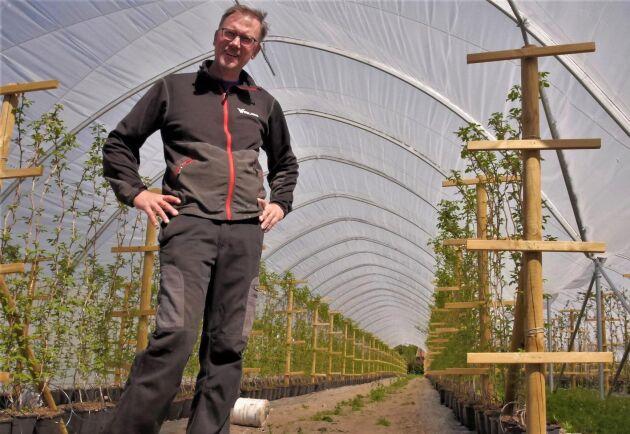 Johan Wirbladh odlar jordgubbar, hallon, björnbär och tomater i de nya tunnlarna.
