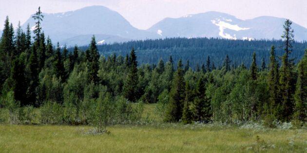 """Alla skogsägare kan inte stämma staten"""