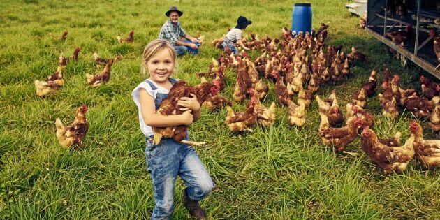 Livet på landet kan stärka immunförsvaret – här är bevisen!