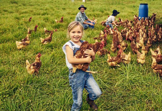 Livet på landet kan gynna immunförsvaret hos både barn och vuxna.