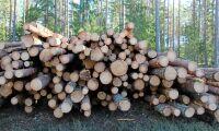 Mellanskog sänker virkespriser