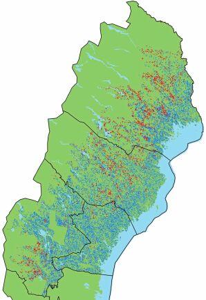Satellitbild som visar ungskog i dåligt skick i norra Sverige. Röda områden markerar skadade skogar medan turkosa områden markerar friska skogar.