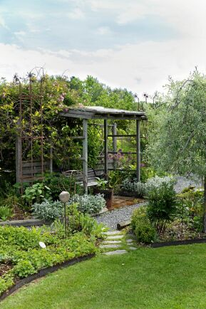 Pergolorna har blivit lite av trädgårdens signum. De erbjuder sköna sittplatser och promenadvägar i skuggan samtidigt som busk- och klängrosorna får stabilt stöd.