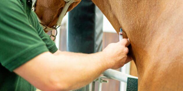 Stängd klinik ett svek och en djurskyddsfråga
