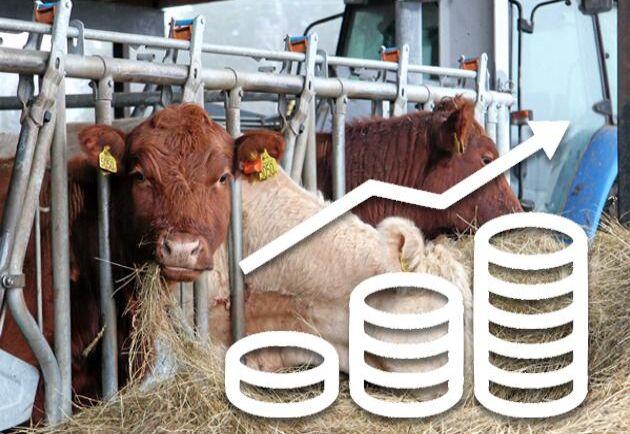 Större efterfrågan på kött, coronapandemin och torkan 2018 påverkar köttpriserna ute i butik.