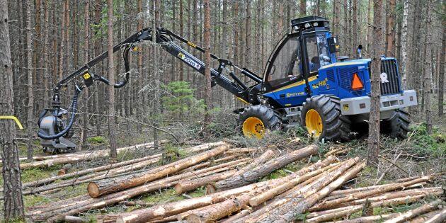 Stor potential att öka produktionen i skogen