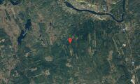 Skogsfastighet i Dalarna såld
