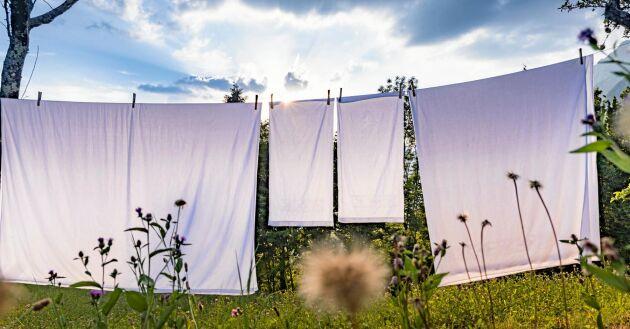 Det går lika bra att hänga tvätt ute under kalla vinterdagar som under ljumma sommardagar.