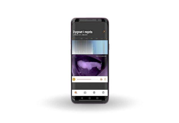 Kameran sänder informationen vidare till en app som hästägaren kan ha i sin mobil och ta fram olika uppgifter, både i realtid och bakåt.