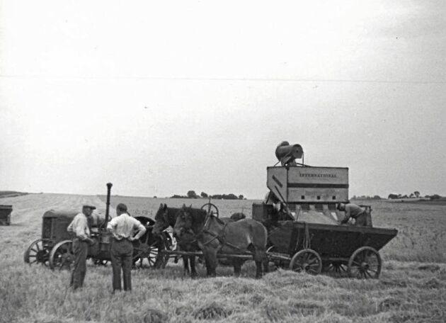 Skördetröskan på Axelvold 1928