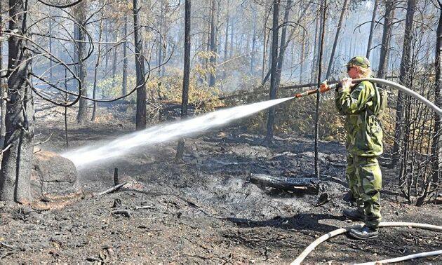 Det pyr i Kristdalaskogarna. Det väntas ta några dagar till innan branden är under kontroll.