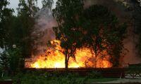 Godståg startade svårsläckt skogsbrand