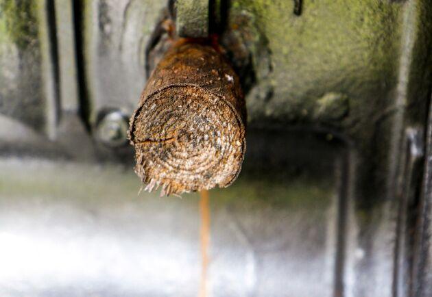 En träbit fungerar som frostplugg.