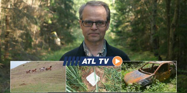 ATL TV: Förebygger brand i skogen