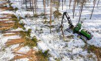 Så många ansökte om att avverka skog
