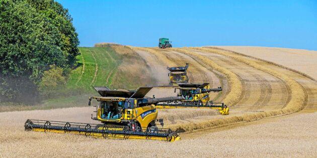 Kalkyl: Jämför lönsamhet mellan konventionell och ekologisk odling